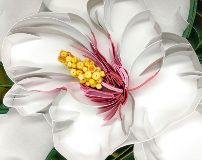 quilled-hibiscus-flowers-picture B