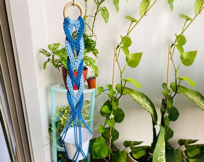 blue-spiral-plant-hanger