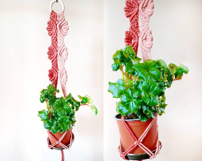 plant-hanger-i-will-protect-you